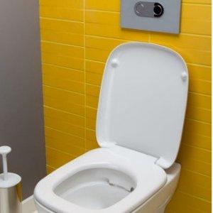Висяща тоалетна чиния STYLE Rimfree с капак плавно затваряне